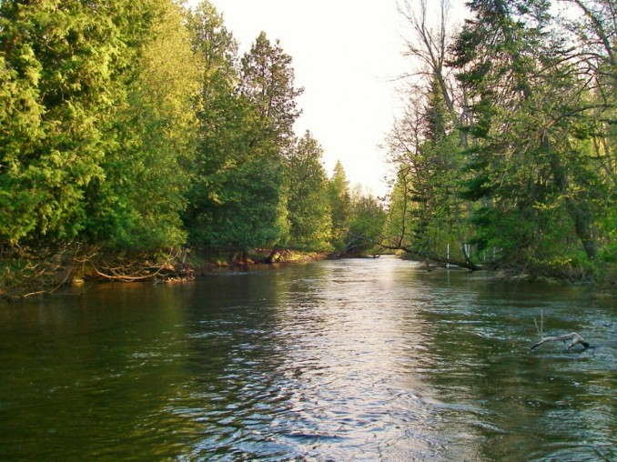 Boardmand-River-Trout-Fishing-Traverse-City-MI-678x508